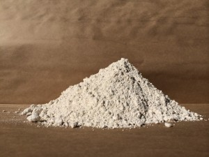 where to buy diatomaceous earth