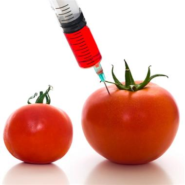 Genetically Modified Foods & Why We Avoid Them