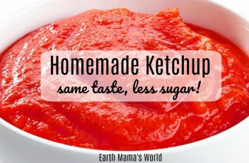 Homemade Ketchup:  Same Taste, Less Sugar!